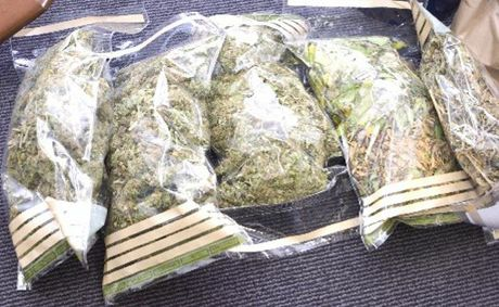 AN alleged drug dealer will face court after he was busted with quantities of drugs in his van on the Pacific Hwy at Duranbah on Monday afternoon.