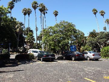The Carlyle St carpark near Clive Square, Napier, where the city council is considering basing an inner-city bus terminal. 