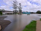 MORE RAIN: Targo St once again in flooded after recent rains. Photo: Scottie Simmonds / NewsMail