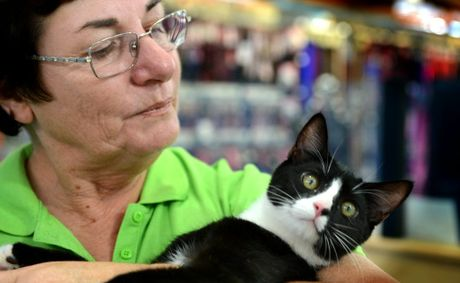 Friends of the pound cat adoption. Sonia Trichter with Wizzard