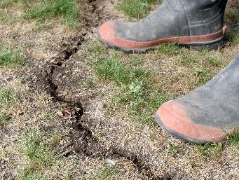 CRACKING UP: Ground in Wanganui shows the effects of the arid conditions. Rain was forecast overnight but fine conditions are expected to return from tomorrow .PHOTO/BEVAN CONLEY