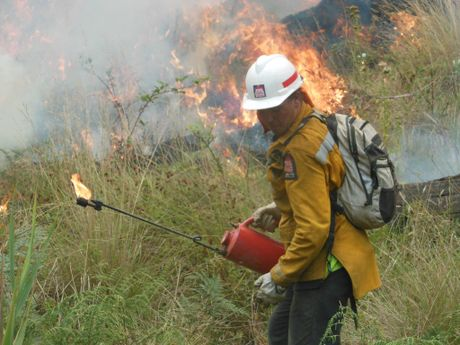 Whangarei firefighter Nathan Sullivan lights a backburner.