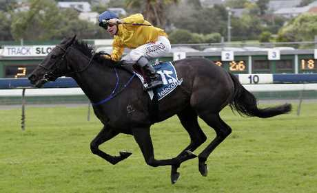 James McDonald's record on Silent Achiever is four wins, including the NZ Derby, and one second.