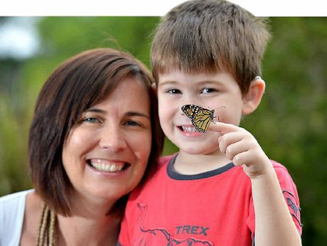NORMAL LIFE: Four-year-old Joseph Morosini and his mum Liz release a butterfly to launch the annual Butterfly Appeal.