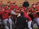 Baseball brawls gets ugly fast