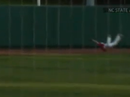 Amazing baseball catch