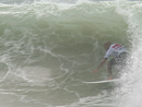 Kelly Slater wins 2013 Quiksilver Pro