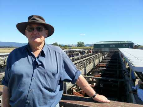 Katikati dairy farmer Allan Williams was at the Rangiruru stock sale to keep his eye on the market and current prices.