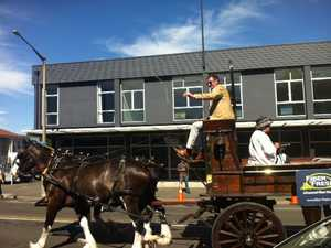 Horse of The Year Parade, Hastings