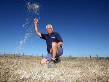 wta140313lfbooth01.jpg John Booth and his dry paddocks in drought conditions at East Taratahi, Carterton.