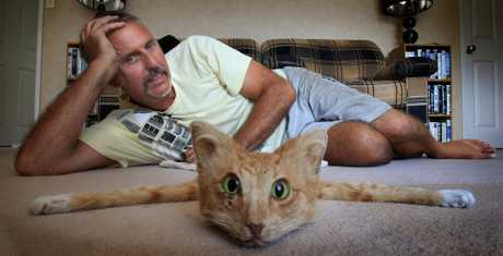 Taxidermist Andrew Lancaster is selling a rug made from a cat on Trade Me.