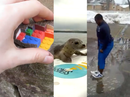 Viral videos of the week - March 20, 2013