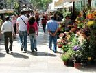 Wander around La Rambla and enjoy the many flower stalls.