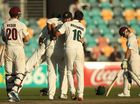 THE Queensland Bulls ensured Tasmania laboured all day to earn its Sheffield Shield triumph at Hobart's Bellerive Oval on Tuesday.