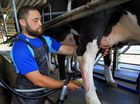 Switching from university student to dairy farm worker has benefited Karl Hewitt's rugby big time.