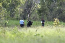 Police and SES personal search Mt Jim Crow, between Yeppoon and Rockhampton, and Gavial Creek, at Port Curtis, for missing Rockhampton pair Robert Martinez and Chantal Barnett. Photo Allan Reinikka / The Morning Bulletin