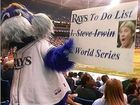 The Tampa Bay Rays mascot with the Steve Irwin sign.