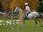 SHOWTIME: The region's 2013 show circuit kicks off at Macksville this week.
