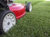 GREEN PEACE: Autumn is a good time for lawn sowing or maintenance.