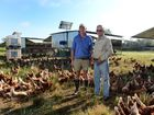 Silverdale Eggs manager Dan Carney and owner Rob Waterson are proud to be the only RSPCA approved free range egg producer in Queensland.
