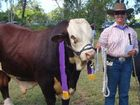 TOP BULL: Fred Hinz presents his trophy for senior champion interbreed bull to Edengarry Chivas Grand, led by Caitlyn at last year's The Caves Show.