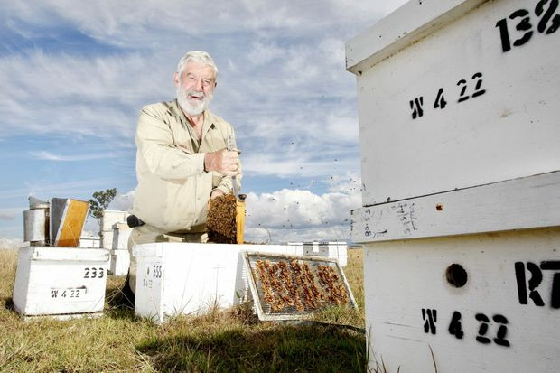 bees09c President of the Queensland Beekeepers Association Trevor Weatherhead with some of his bee hives. Photo: Sarah Harvey JN0910HC