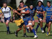 Round eight of the premier Baywide rugby competition promises plenty with a number of clashes between sides locked together on the competition ladder.