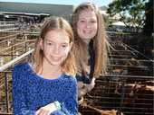 Hannah Johnston and Emma Kropp checked out the prime cattle on Friday.