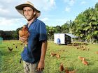 PERMACULTURE is fast becoming mainstream and living, breathing training centres such as Possum Creek Farm might just change the way we eat and live.