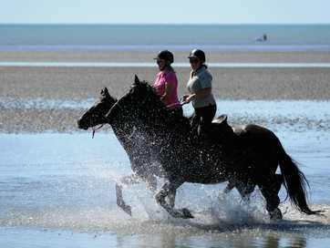 Fraser Coast Bush & Beach Trail Riders take to the beach at Dundowran on the weekend.