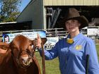 AN ONGOING friendly rivalry between two Gympie stud cattle breeding families played out once again in the Brangus judging at the Gympie Show on Thursday.