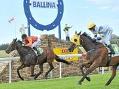 GOOD CHANCE: Slipstreams, trained by Ballina's Stephen Lee, crosses the line first in the Aussie Rock Landscape and Construction Benchmark 65 Handicap (1610m) at Ballina in April. The horse is back in action today.