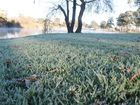 EARLY risers will be feeling the familiar crunch underfoot as frosts return to the Granite Belt.