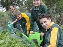 CENTENARY Heights State High School students, delighted to be getting their hands dirty in the garden, now need some experienced green thumbs to mentor them.