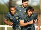 EX-WALLABIES prop Glenn Panoho fears Aussie spirits will be broken in the first Test against the marauding tourists.