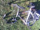 An ex-Brit's bike is stolen in Napier and torched.