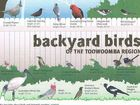 BLOG: Chamber CEO, blogger and bird lover Greg Johnson has discovered the Holy Grail to identifying the different bird species that visit Toowoomba's backyards.
