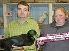 JIM Innes isn't just a water fowl owner for the fun of it.