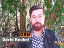 Fairfax candidate David Knobel