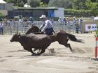 THE Frasers Livestock Transport Stallion Draft final was an an outstanding exhibition of campdrafting on Saturday.