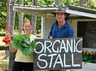 "A KALE bunch a day keeps the doctor away Bangalow Naturopath Jules Galloway says – and she wants to show others where to find the freshest local food ""medicine"""