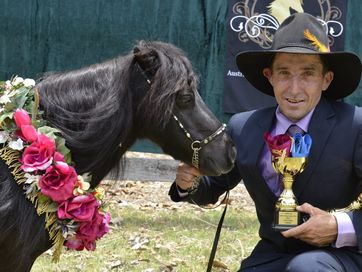 The NSW Grafton Miniature Horse Championship Show at Hawthorne Park South Grafton on Saturday