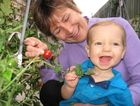 Mandy Healey gives Kyler Farmer his first ever tomato, organically grown in her backyard.