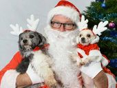A MORNING of heavy rain couldn't stop people from turning up so their pets could see Santa.