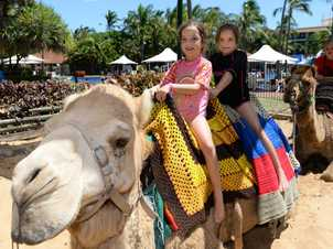 L-R Eilish (8) and Jessica (10 Cox at the Mercure Capricorn Resort Kids Christmas Party. Photo: Chris Ison / The Morning Bulletin