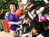 REMEMBRANCE TREE: Ipswich Hospice volunteer Denise Pierce with the bauble tree in Booval Fair. People can buy a bauble for $2 to raise money for Ipswich Hospice.