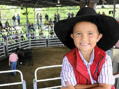 HAPPY DAYS: Four-year-old Zac Rogers has been casting his eye over many pens of stock for the past few years. His family will be hoping 2014 brings a smile to their faces.