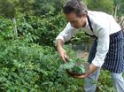 CHEF Campbell Rowe describes himself as a modern-day forager.
