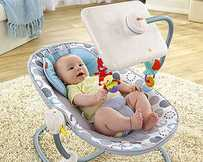 Fisher Price's Newborn-to-Toddler Apptivity Seat with iPad dock.
