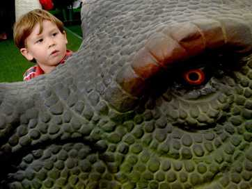 A Walking With Dinosaurs display has kids enjoying a trip down memory lane at Tweed City Shopping Centre. It finishes this weekend.
